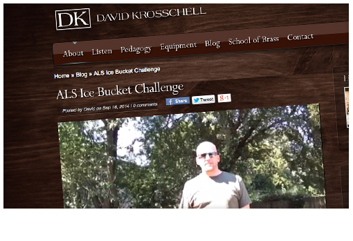 sb-project_0002_david-krosschell-website